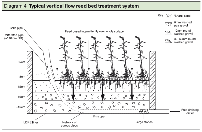 Diagram 4 Typical vertical flow reed bed treatment system